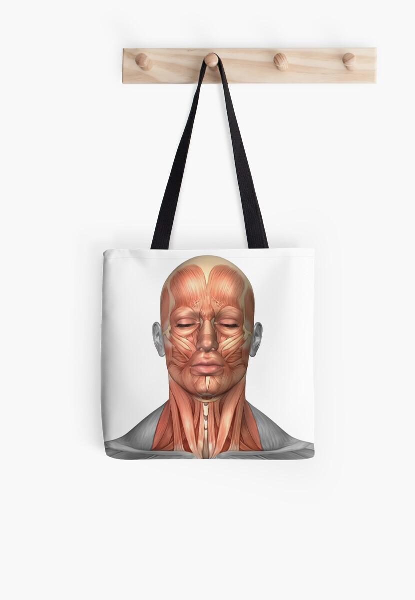 Bolsas de tela «Anatomía de los músculos del rostro y el cuello ...