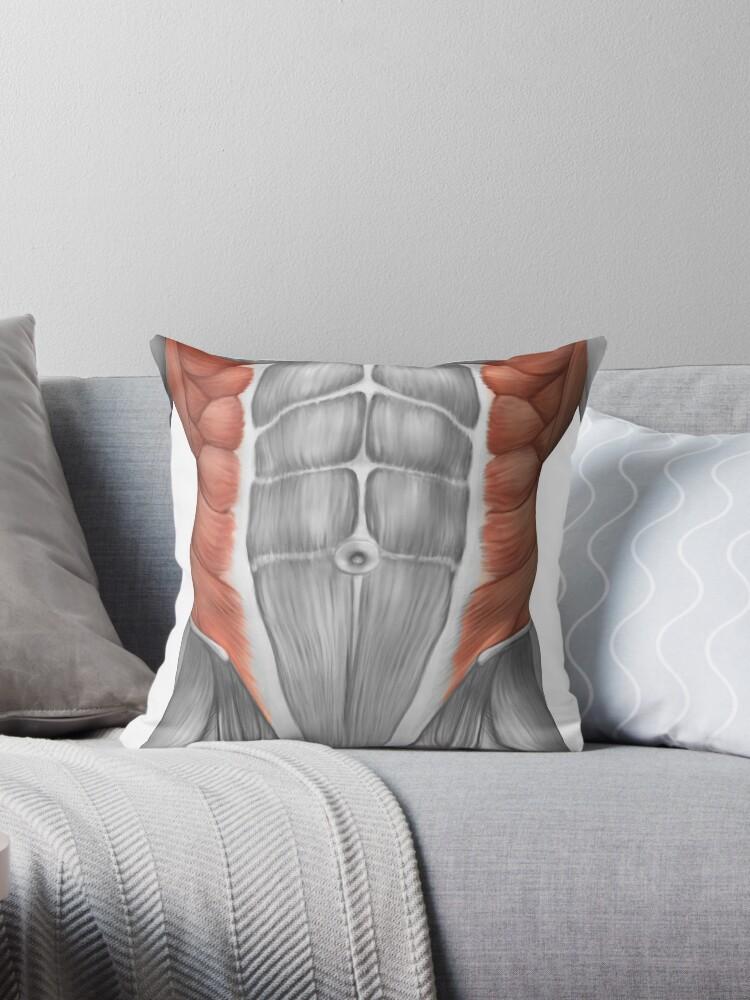 Cojines «Anatomía muscular masculina de la pared abdominal.» de ...