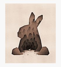 That's No Ordinary Rabbit Photographic Print