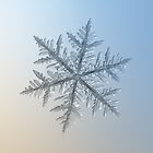 Silverware, snowflake macro photo by Alexey Kljatov