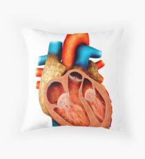 Anatomy of human heart, cross section. Throw Pillow