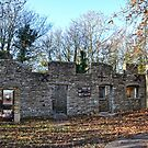 Rectory Cottages at Tyneham Dorset UK by lynn carter
