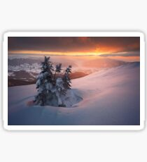Beautiful sunset in winter Carpathians Sticker