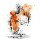 Squirrel Splatter by Adlaya
