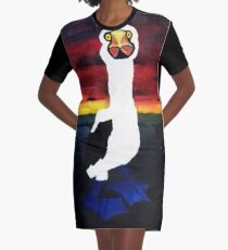 Booby Graphic T-Shirt Dress