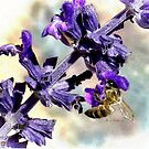 Sting Like A Bee  by LouisaCatharine