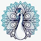 Peacock by Lyndsey Hughes
