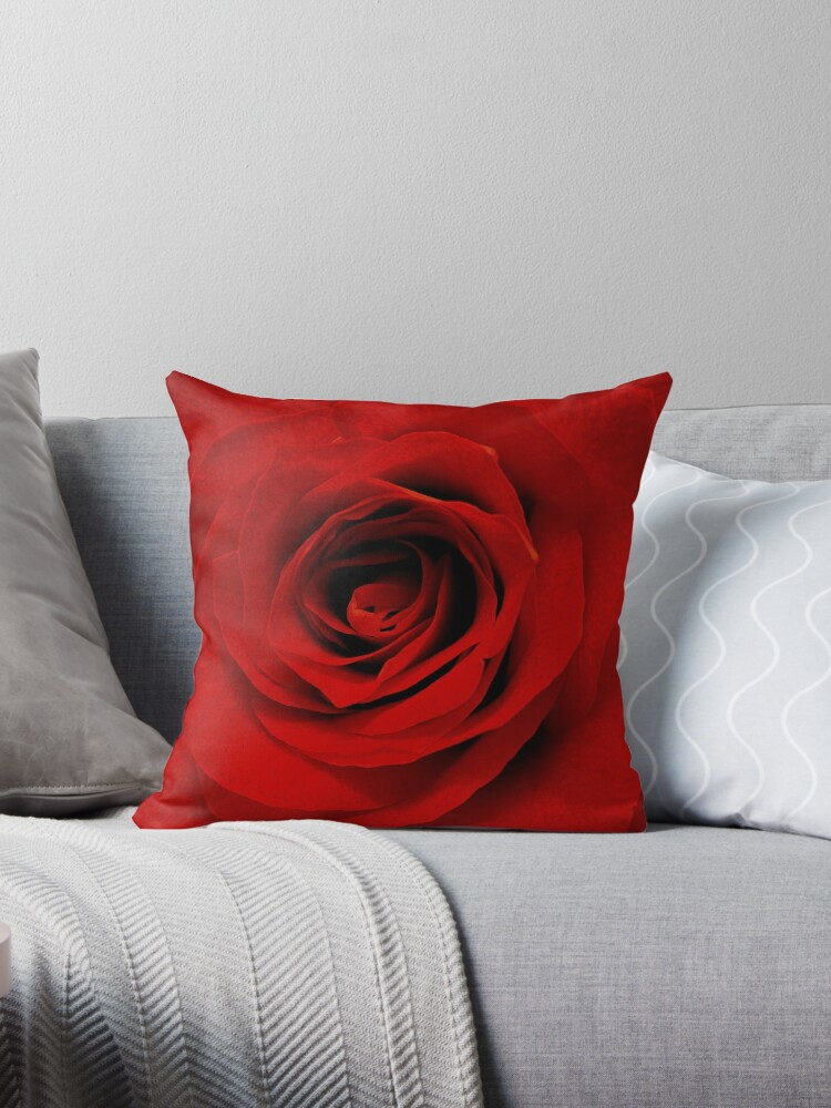 red rose by DrCreo