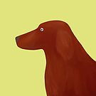 Red Setter by HeliconHill
