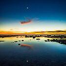 Venus, Moon, Moon, Venus by Brian Haidet