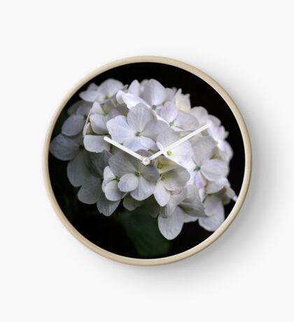 I love a White Hydrangea don't you? Clock