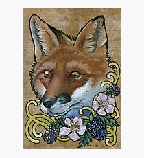 Neotraditional Fox with Blackberries  Photographic Print