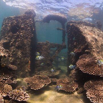 Tangalooma Wrecks 2 by KaraMurphy