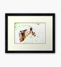 Animal Farm 4 Framed Print