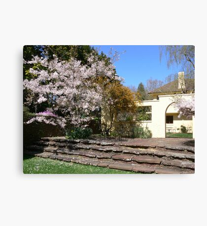 Spring in the Blue Mtns Canvas Print