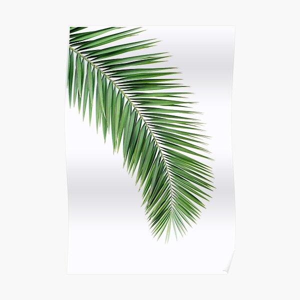 Palm leaf wall decor, printable leaf palm, printable palm leaf, palm leaf printable, palm leaf poster, palm leaf wall art, palm tree print Poster
