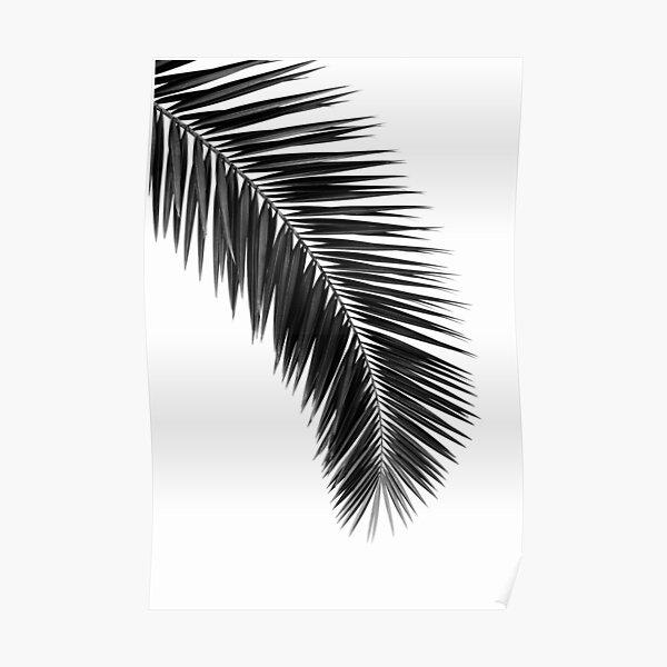 Printable leaf palm, printable palm leaf, palm leaf printable, palm leaf poster, palm leaf wall art, palm tree wall print  Poster