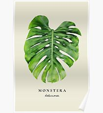 Póster Monstera print, monstera wall art, monstera leaf art, monstera art print, monstera art, monstera imprimible, monstera deliciosa