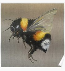 Bumble Bee Oil Painting by Angela Brown Art Poster