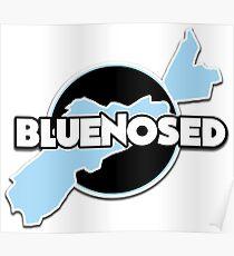 Bluenosed Logo Poster