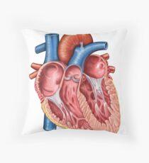 Interior of human heart. Throw Pillow