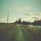 Beach Road by OLIVIA JOY STCLAIRE