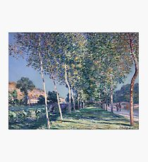 Alfred Sisley - Alley Of Poplars In The Outskirts Of Moret-Sur-Loing, 1890 Photographic Print