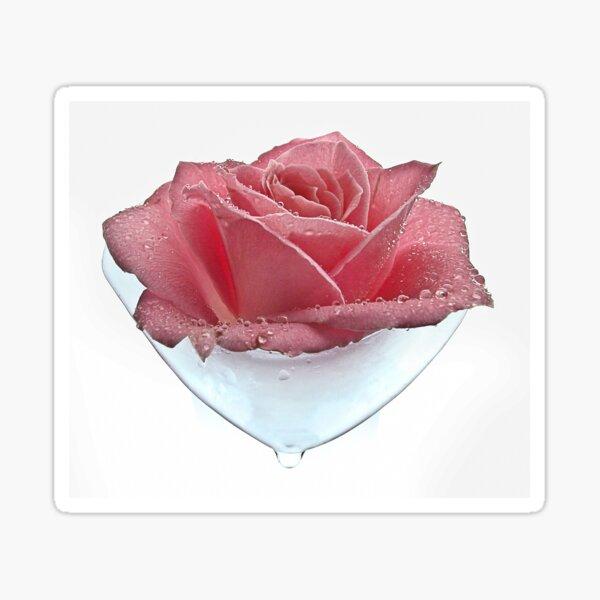 Rose Tear Sticker