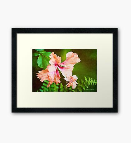 Showy Hibiscus Amid the Greenery Framed Print