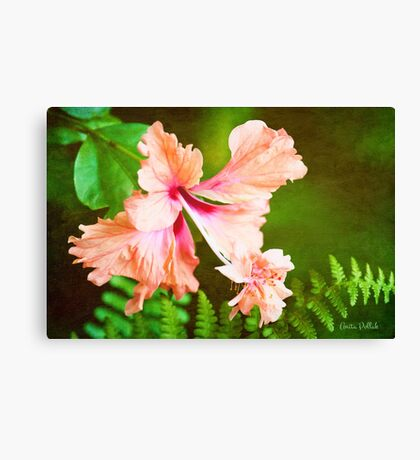 Showy Hibiscus Amid the Greenery Canvas Print