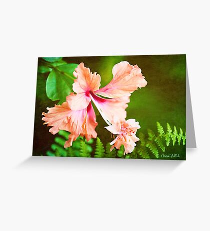 Showy Hibiscus Amid the Greenery Greeting Card
