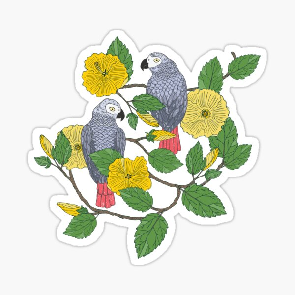 African Grey Parrots and Yellow Flowers Sticker