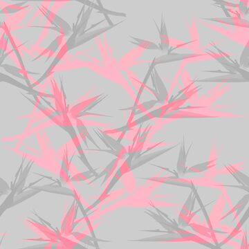 cool pink - bird of paradise von youdesignme