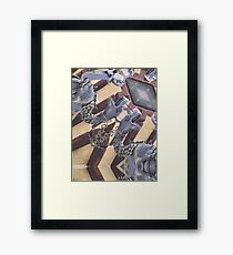 Drago in Assisi Framed Print