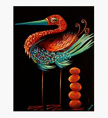 Clever Bird Photographic Print