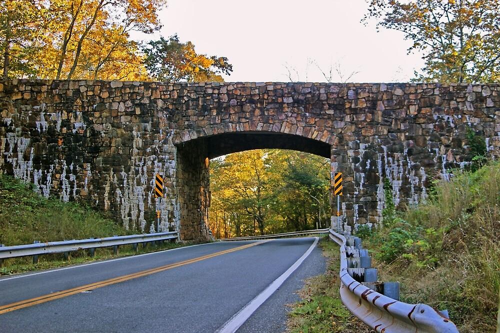 FDR Memorial Stone Bridge  by Linda Yates