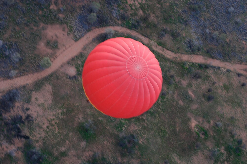Red Balloon by Mark Williamson