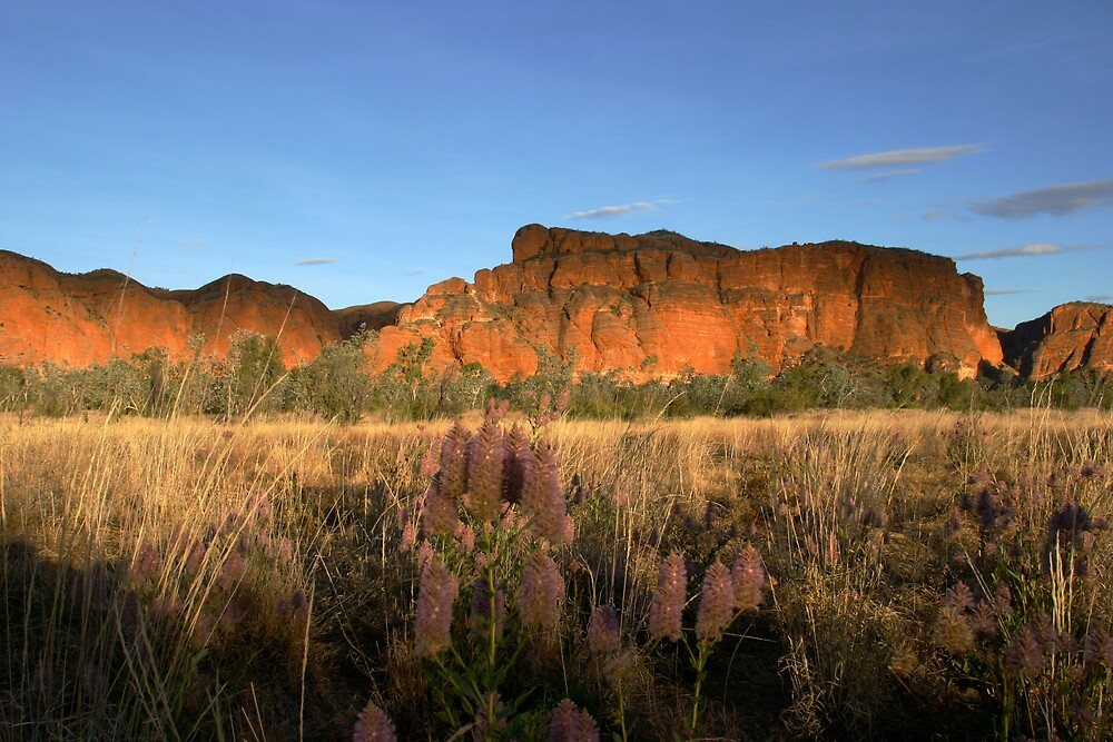 Sunset Bungle Bungles by Mark Williamson