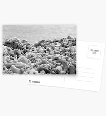 Blue Pearl Bay Coral Postcards