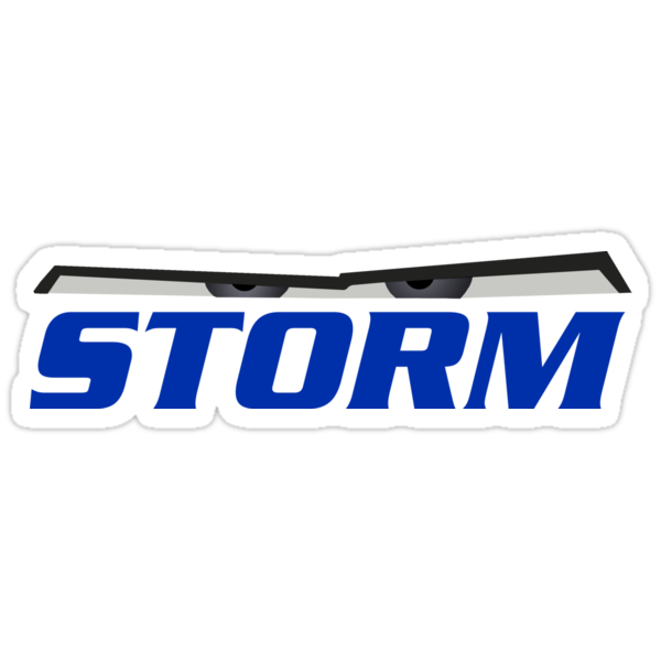 Image Result For Vinyl Storm Windows