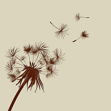 Dandelion by LaraAllport