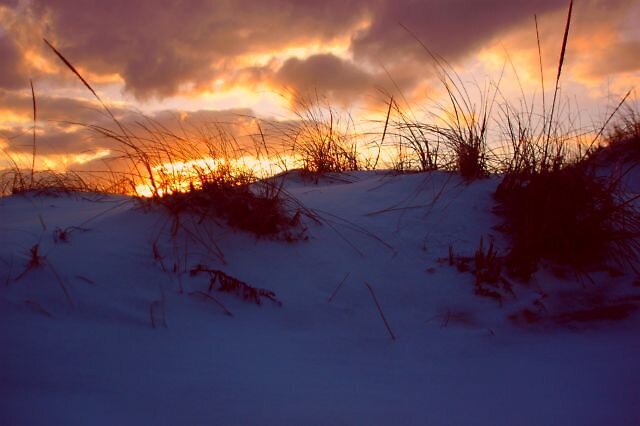 Sunset Coopers Neck Beach Southampton New York by Brennen Cole
