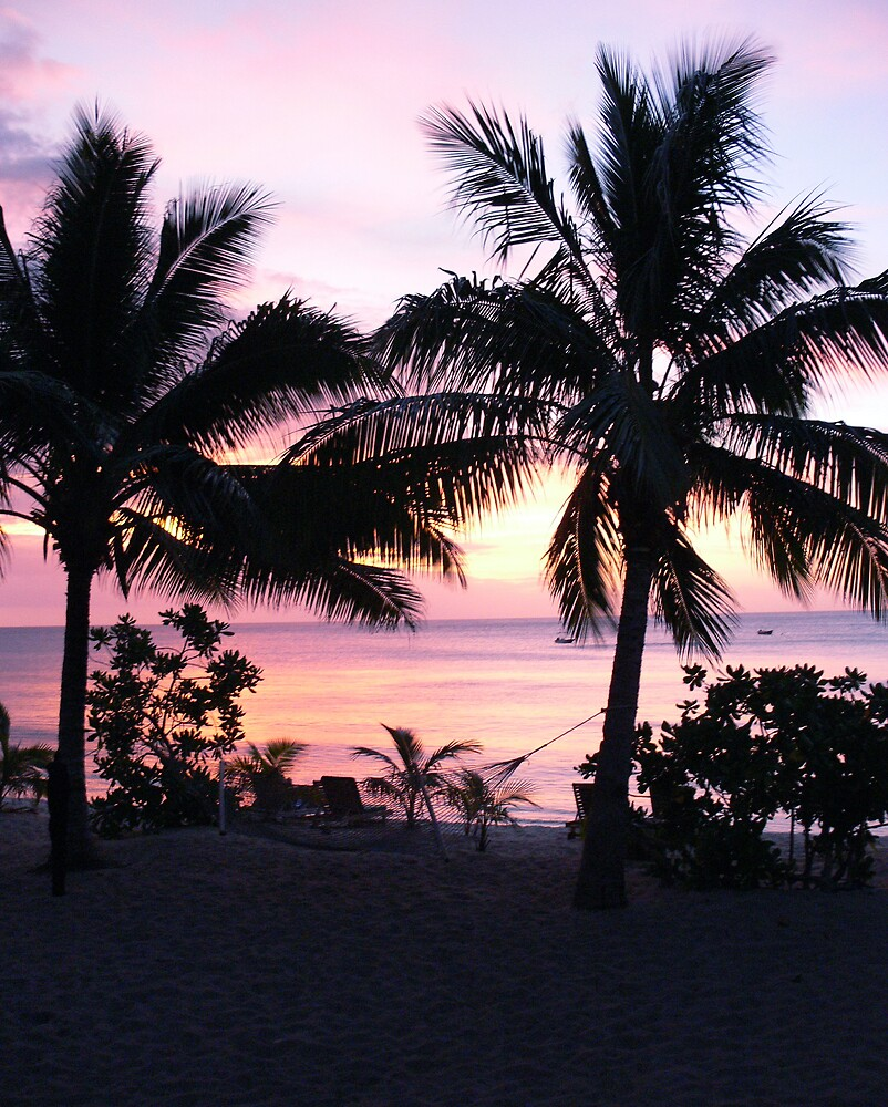 Tropical Sunset by Abby Tropea