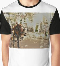 Horse drawn carriage Graphic T-Shirt