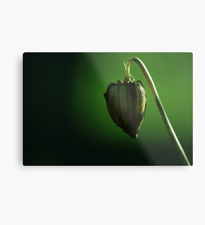 suspended heart Metal Print