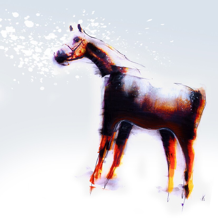 horse float by elsh