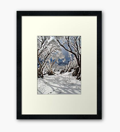 Snowgums Framed Print