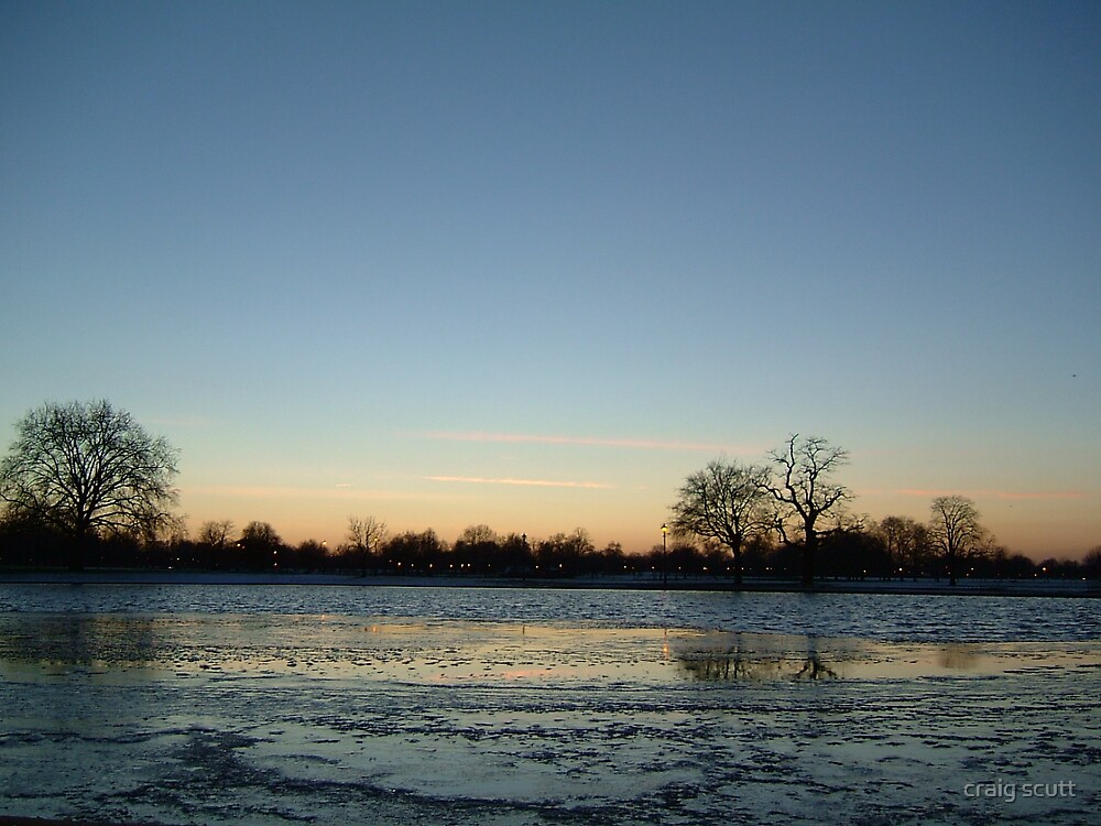 Cock pond on ice by craig scutt