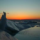 Sunset Icey build up on Bay by Brennen Cole