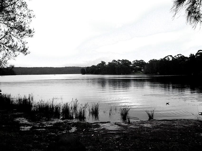 Wallaga Lake by Meagan11